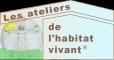 Atelier habitat vivant Auxerre, Géobiologie en Bourgogne
