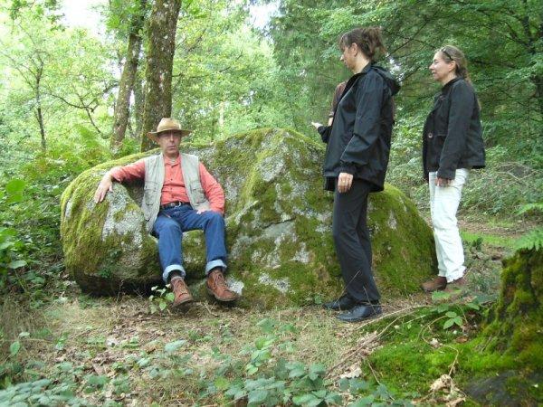 Formation géobiologie sacrée - Le fauteuil du loup