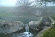 Géobiologie, histoires d'eau