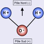 Histoires d'eau, la polarisation et la structuration de l'eau